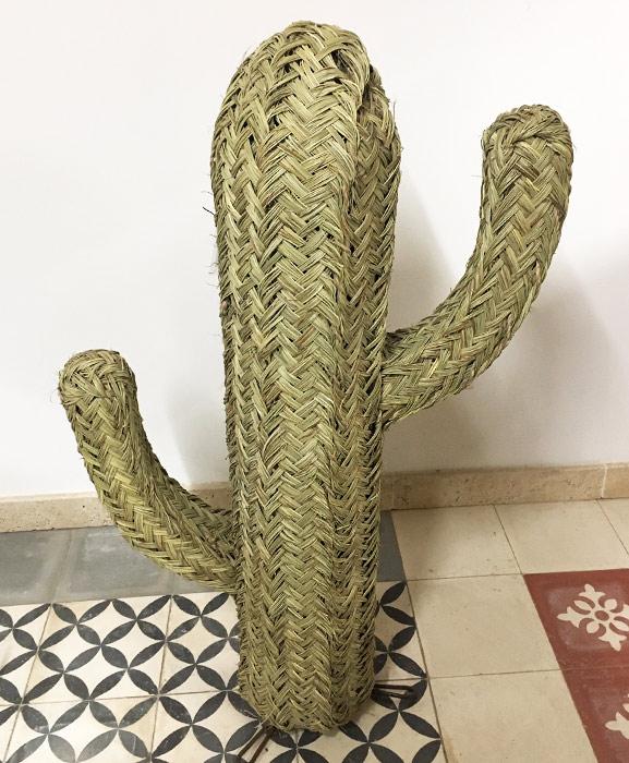 cactus osier et doum